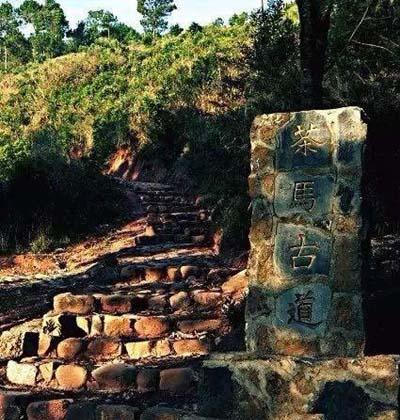 体验古老文化-茶马古道