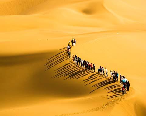 库布齐沙漠团建