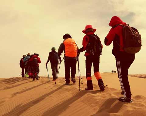 腾格里沙漠团建体验